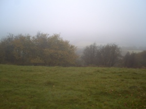 View point on a misty morning