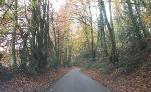 Coming home; the road back from some training - 18th November 2011