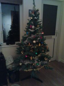 Recyced Christmas tree; Our Christmas tree and all its decorations were either from freecycle or others rubbish bins before the lights (also others cast offs) were added and the cats let back into the room