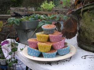 Carrot Cupcakes - 13 October 2012