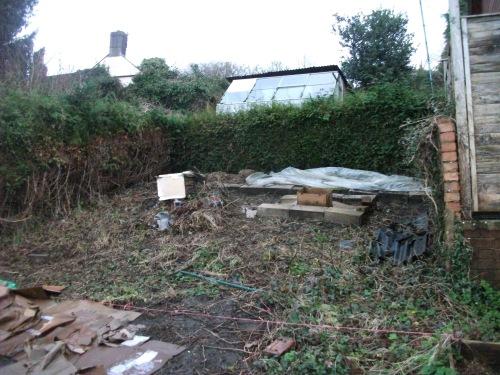 Vegetable garden some months on - Decmber 2012