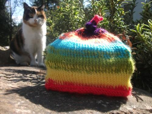 Newborn Rainbow Umbilical Cord Hat - April 2013