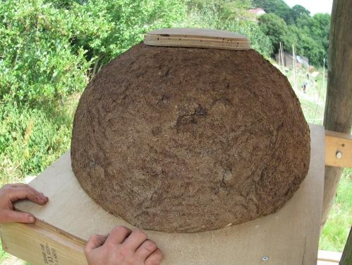 Sun hive: July 2013