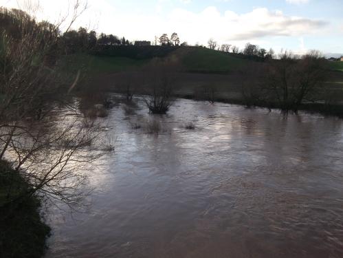 The swollen river Wye last week - 17th January 2014