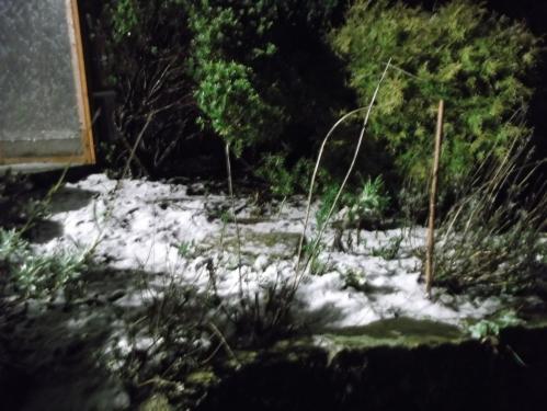Night time snow fall - 26th january 2014