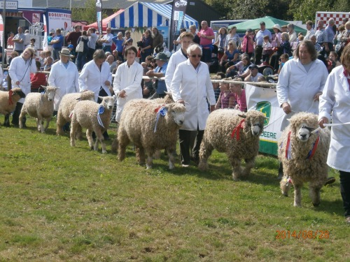 Grand Parade Monmouth Show 2014