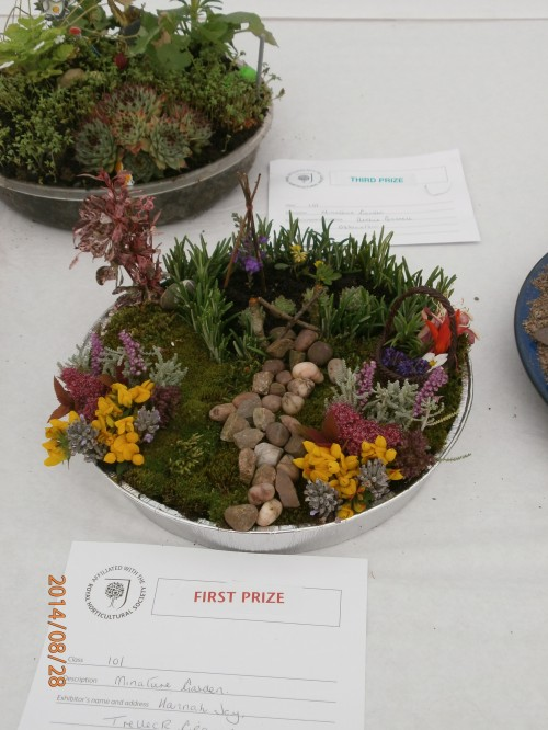 Garden on a plate ~ Monmouth Show 2014