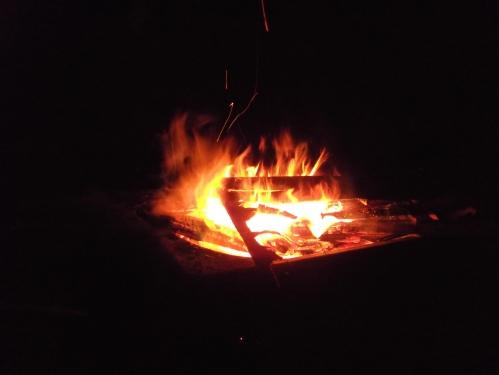 Samhain Fire ~ 2015